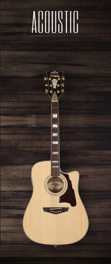 D'Angelico Guitar ACOUSTIC